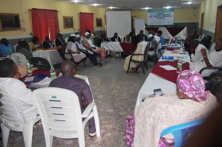 Capacity development group engagement in elections workshop5